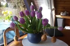 Ferienhaus Damp Blumen