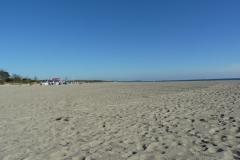 Strand Damp